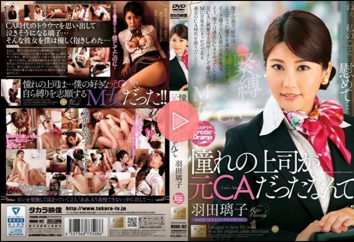 暗戀的上司是前空姐啊 羽田璃子